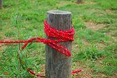 Red Rope Tieup