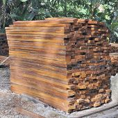 Tropical hardwood timber