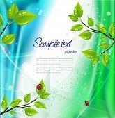 Summer greeting card. Vector illustration