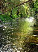 Curso de um rio