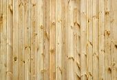 light-colored wooden background