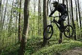 jump with a mountain bike at forest