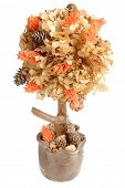 hand made tree of dried flowers and cones