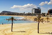 View from Port Olympic on Barcelona beach and Montjuic poster