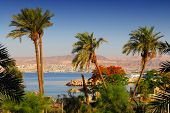 View on Eilat in Israel from Aqaba in Jordan: diving destinations on the Red Sea