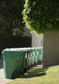 Green Garbage Cans In Beverly Hills Vertical