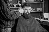 Barber With Clipper Trimming Hair On Temple Of Client. Hipster Lifestyle Concept. Barber With Hair C poster