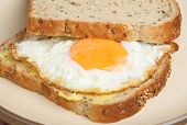 Fried egg sandwich with granary bread.