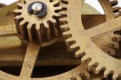 Antique Clock Gears Macro