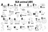 Zoo Alphabet. Animal Alphabet. Letters From A To Z. Cartoon Cute Animals Isolated On White Backgroun poster