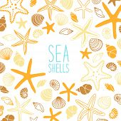 Cute Vintage Frame With Hand Drawn Shells And Starfishes And Hand Written Text Sea Shells poster