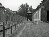 Eastern Europe Poland Auschwitz Concentration Camp Black And White
