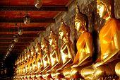 Buda de ouro grupo