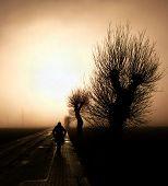 Walking Towards The Mist
