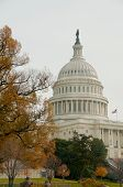 Us Capitol, Washington Dc,  Usa. Autumn.