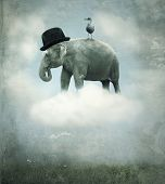 Fantasy Elephant Flying
