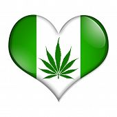 stock photo of marijuana leaf  - A green heart - JPG