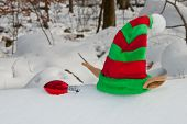 Elf Hat Left Behind