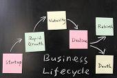 Conceito de ciclo de vida do negócio