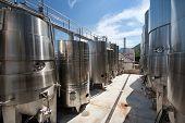 Winery In Croatia