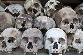 Stacked human skulls