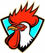 Rooster Cockerel Head Crest