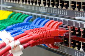 pic of cat5  - Network switch and UTP ethernet lan cables - JPG