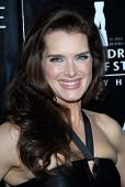 Brooke Shields at the celebration for The Rodeo Drive Walk of Style Award given to Gianni and Donatella Versace. Beverly Hills City Hall, Beverly Hills, CA. 02-08-07
