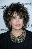 Carole Bayer Sager at the 2007 Clive Davis Pre-Grammy Awards Party. Beverly Hilton Hotel, Beverly Hi