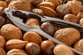 stock photo of brazil nut  - Mixed whole nuts with a shiny new nut cracker - JPG