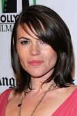 Clea Duvall at the 16th Annual Hollywood Film Awards Gala, Beverly Hilton Hotel, Beverly Hills, CA 1