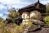 Giant Mushroom Stone