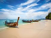 Longtail Boats on the Shore in Ko Phi Phi, Thailand