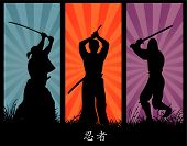 Постер, плакат: ниндзя