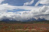 Paine Mountains Range Landscape