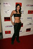 Miss Vicious at Dave Navarro's Halloween Lingerie and Costume Ball, The Highlands, Hollywood, CA 10-