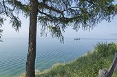 Baikal landscape with tree and water surface