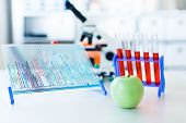 DNA analysis of agricultural products, GMO apple concept