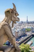 Gargoyle Stryge and demon at Notre Dame of Paris overlooking the skyline at a summer day (Selectice