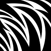 Zebra Shape Vector Pattern