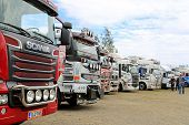Row Of Show Trucks At A Truck Meeting