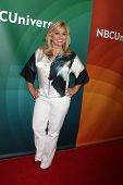 LOS ANGELES - JUL 14:  Julie Chrisley at the NBCUniversal July 2014 TCA at Beverly Hilton on July 14, 2014 in Beverly Hills, CA