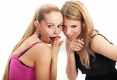 Two Young Woman Wispering Secrets