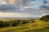 Rural Cotswolds