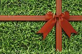 red bow on fresh green grass background