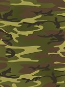 Military Texture