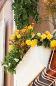 image of lobelia  - Flowers on forged balcony in Rimini - JPG