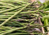 Fresh Asparagus At The Market