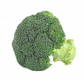 image of cruciferous  - Fresh broccoli - JPG