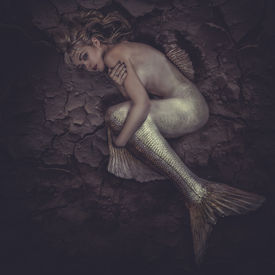 image of fairy tail  - mermaid trapped in a sea of  - JPG